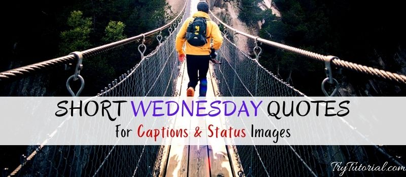 Best Short Wednesday Quotes