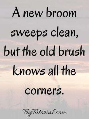 Famous Cleanliness Quotes
