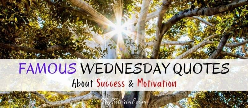 Famous Wednesday Quotes About Success