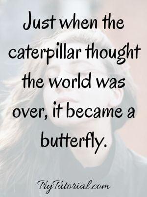Magic Of Life Quotes