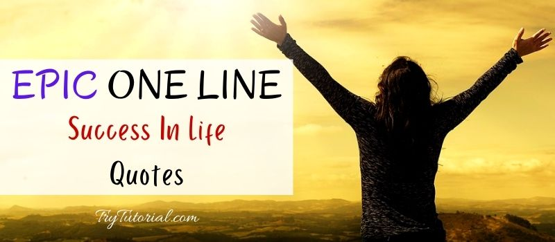 One Line Success Quotes In Life