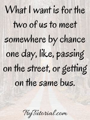 Quotes About Meeting Someone By Fate