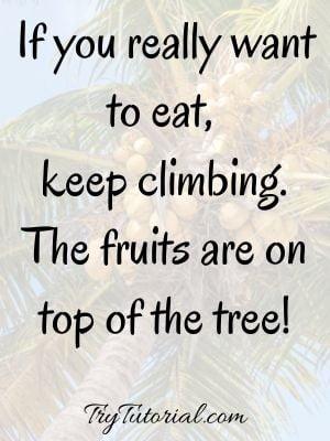 Tuesday Wisdom Quotes