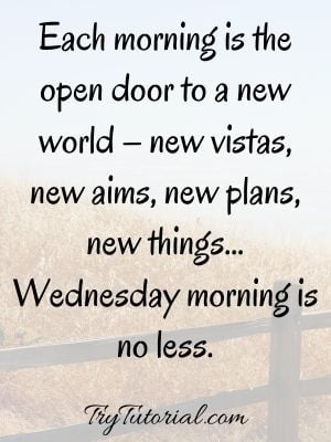 Wise Wednesday Quotes