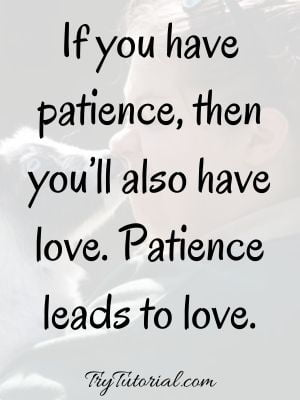 Best Patience Quotes About Love