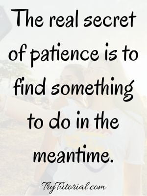 Funny Patience Quotes & Sayings